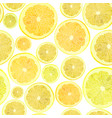 background of cut across a lot of citrus fruits vector image vector image