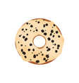 donut with glaze and chocolate isolated on white vector image