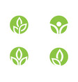 leaf ecology nature logo template vector image vector image