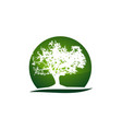 oak tree logo design template vector image vector image