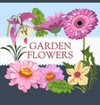 set of garden flowers vector image