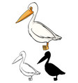 set pelican cartoon vector image
