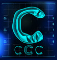 c letter capital digit roentgen x-ray vector image vector image