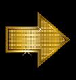 golden arrowhead vector image vector image