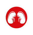 Human Kidney Single flat icon symbol vector image