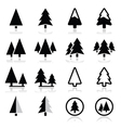 Pine tree icons set vector image vector image