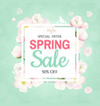 spring banner with apple tree flowers vector image vector image