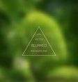 Abstract Tree Gradient Mesh Blurred Background vector image vector image