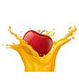 apple juice splash vector image vector image
