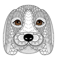 beagle puppy vector image