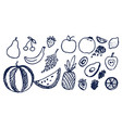 lot black hand drawn fruits vector image