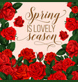 spring design with roses vector image vector image
