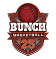 color template on theme basketball vector image vector image