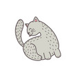 cute grey cat licking his back isolated element vector image vector image