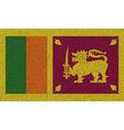 Flags Sri Lanka on denim texture vector image