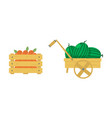 flat of wooden box with juicy vector image