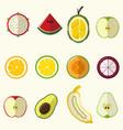 half fruit set vector image