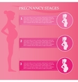 Pregnant female silhouettes vector image vector image