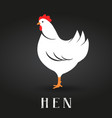 premium chicken logo labels badges and design vector image