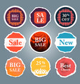 sale tags sale banners set shopping vector image vector image