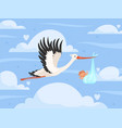 stork with bain clouds new born little kids vector image