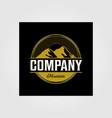 vintage mountain outdoor company logo in dark vector image vector image