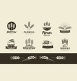 agriculture wheat logo or label farm farming vector image