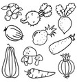art of vegetables doodles vector image vector image