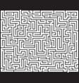big maze labyrinth vector image