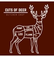 Deer meat cuts in color vector image vector image