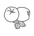 nectarine fruit icon design sign vector image