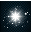 Shine star sparkle icon 12a vector image vector image
