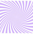 spiral background from purple and white rays vector image vector image