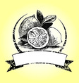 Vintage label with lemons vector image vector image