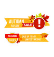 autumn sale flyers seasonal sale banners vector image vector image