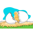 chick with broken egg vector image vector image