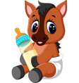 cute baby horse cartoon vector image
