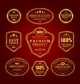 gold frames premium labels and logos set vector image vector image