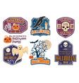 Halloween vintage badges emblems or labels vector image vector image