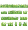 nature floral collection grass background set vector image