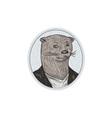 Otter Head Blazer Shirt Oval Drawing vector image vector image