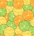Seamless Pattern with Oranges Lemons and Limes vector image vector image