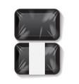 set of black rectangle blank styrofoam plastic vector image vector image