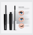 mascara packaging with eye makeup vector image