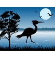 Stork on lake vector image vector image