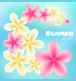 summer time poster background with bright tropical vector image vector image