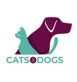 cats and dogs vet clinic pets shop or shelter vector image vector image