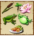 Great frog kingdom set of objects related vector image