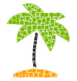 island tropic palm collage of squares and circles vector image vector image