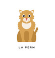 portrait of la perm cat cute feline with long vector image vector image